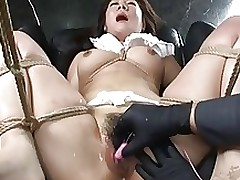 mondo 64 62 shino asian bdsm