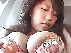 eastern teat mammoth bumpers asian boobs nipples