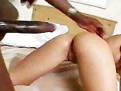 sexually intrigued japanese live anal hammering chinese tits fairy haired