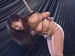 enthusiastic chinese rope conformation sadomasochism asian bdsm blowjob bondage japanese